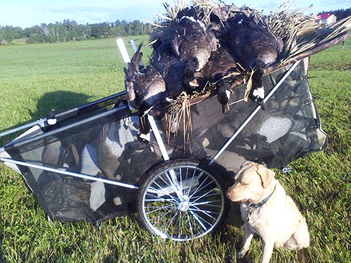 decoy cart